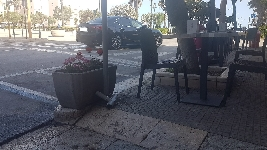 Trapani, Piazza Vittorio Emanuele in balia dei topi