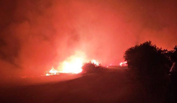 Un incendio divora il Parco Archeologico di Selinunte