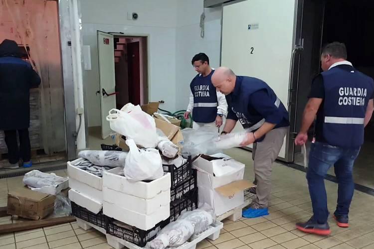 Marsala sequestrati 700 chili di pesce di origine incerta for Esl soggiorni linguistici opinioni