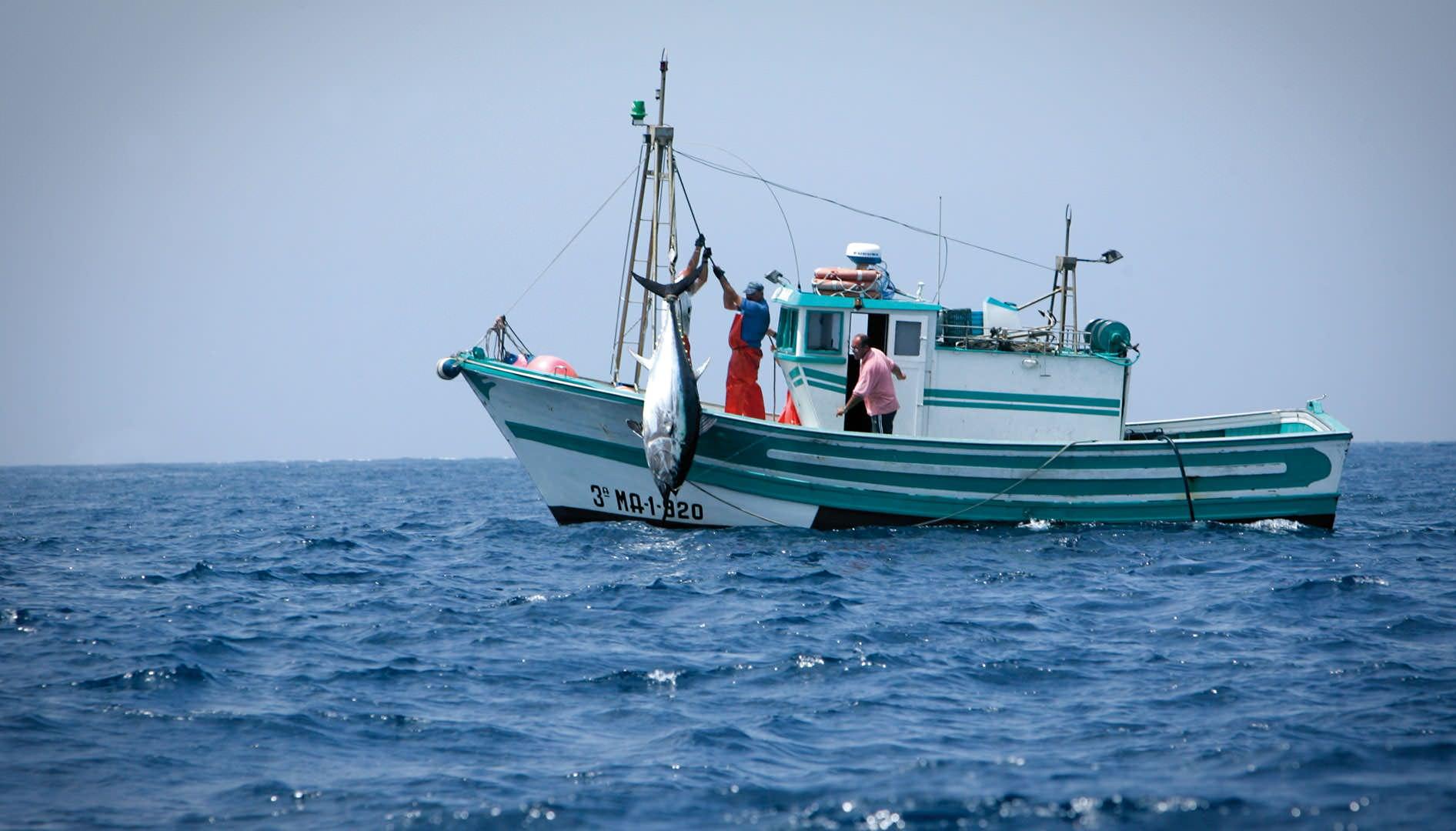 Pesca invernale della società di uomini video