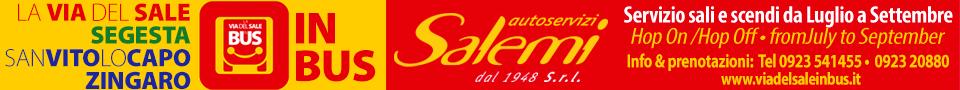 http://www.tp24.it/immagini_banner/1436187672-autoservizi-salemi-le-vie-del-sale.jpg