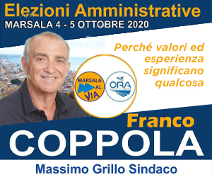 https://www.tp24.it/immagini_banner/1600701005-amministrative-2020-consigliere.jpg