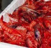https://www.tp24.it/immagini_articoli/01-04-2019/1554112417-0-mazara-dalle-teste-gambero-olio-speciale-cucina.jpg