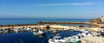 https://www.tp24.it/immagini_articoli/01-04-2019/1554124910-0-marinella-selinunte-protesta-pescatori-situazione-porticciolo.jpg
