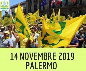 https://www.tp24.it/immagini_articoli/01-11-2019/1572602888-0-sicilia-novembre-migliaia-agricoltori-piazza-palermo.png