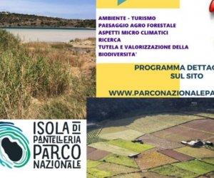 https://www.tp24.it/immagini_articoli/01-11-2019/1572604172-0-novembre-workshop-parco-nazionale-isola-pantelleria.jpg