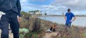 https://www.tp24.it/immagini_articoli/01-11-2019/1572621908-0-trapani-trova-cani-abbandonati-comune-adesso-tenga.jpg