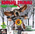 https://www.tp24.it/immagini_articoli/02-01-2019/1546423333-0-randagi-solidali-levento-allaias-marsala.jpg