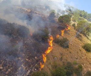 https://www.tp24.it/immagini_articoli/02-08-2020/1596382903-0-gli-incendi-in-provincia-di-trapani-il-pd-regione-intervenga-per-tutelare-il-patrimonio-boschivo.jpg
