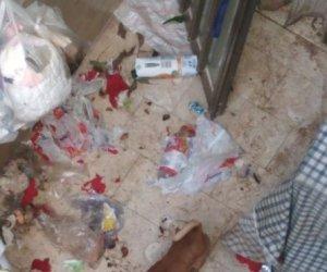 https://www.tp24.it/immagini_articoli/03-01-2020/1578063074-0-salvato-trapani-cane-stato-abbandonato-casa-settembre.jpg