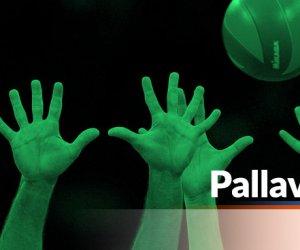 https://www.tp24.it/immagini_articoli/03-05-2020/1588505546-0-nbsp-federazione-italiana-pallavolo-in-soccorso-dei-club-ecco-gli-interventi-nbsp-economici-nbsp-e-le-decisioni-dopo-il-blocco-dei-campionati.jpg