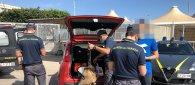 https://www.tp24.it/immagini_articoli/03-07-2020/1593766794-0-sbarca-nbsp-in-sicilia-con-della-droga-denunciato-dalla-guardia-di-finanza.jpg