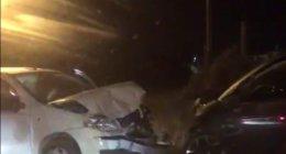 https://www.tp24.it/immagini_articoli/03-08-2020/1596431414-0-marsala-altro-incidente-scontro-frontale-alla-lega-navale-nbsp.jpg