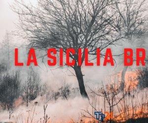 https://www.tp24.it/immagini_articoli/03-08-2021/1628024402-0-nbsp-acqua-sul-fuoco-la-sicilia-brucia-e-si-tenta-di-correre-ai-ripari.jpg