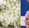 https://www.tp24.it/immagini_articoli/03-09-2020/1599125200-0-ryanair-rafforza-la-milano-palermo-e-annuncia-la-chiusura-di-alcuni-basi-in-italia-nbsp.jpg