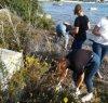 https://www.tp24.it/immagini_articoli/03-10-2019/1570109989-0-marsala-studenti-pascasino-puliscono-lungomare-spagnola.jpg