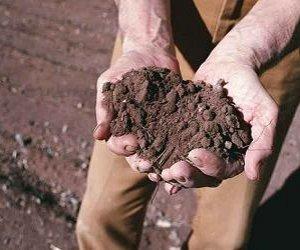https://www.tp24.it/immagini_articoli/03-11-2014/1415016551-0-dal-credito-siciliano-50-milioni-di-euro-per-l-agricoltura-dell-isola.jpg