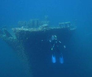 https://www.tp24.it/immagini_articoli/04-04-2014/1396632385-0-nell-area-marina-delle-isole-egadi-la-posidonia-cresce-anche-sui-relitti-sommersi.jpg