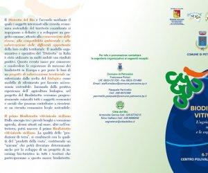 https://www.tp24.it/immagini_articoli/04-06-2014/1401892857-0-venerdi-e-sabato-a-petrosino-il-convegno-sul-biodistretto-vitivinicolo.jpg