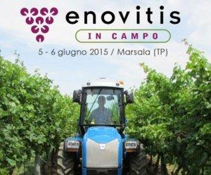 https://www.tp24.it/immagini_articoli/04-06-2015/1433411649-0-enovitis-a-marsala-gli-stati-generali-del-vino-biologico.jpg
