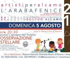 https://www.tp24.it/immagini_articoli/04-08-2018/1533391319-0-alcamo-debuttano-osservazioni-astronomiche-riserva-naturale-bosco-dalcamo.jpg
