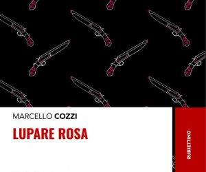 https://www.tp24.it/immagini_articoli/04-11-2019/1572857037-0-lupare-rosa-storie-damore-ndrangheta-libro-marcello-cozzi.jpg