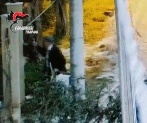 https://www.tp24.it/immagini_articoli/04-12-2019/1575443428-0-estorsione-valderice-video-dellanziano-minacciato-vicino-casa.png