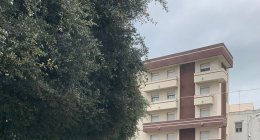 https://www.tp24.it/immagini_articoli/05-03-2021/1614929784-0-marsala-crolla-una-albero-al-semaforo-di-viale-cesare-battisti.jpg