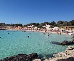 https://www.tp24.it/immagini_articoli/05-04-2019/1554489396-0-favignana-corso-dellalta-scuola-turismo-ambientale.jpg