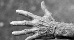 https://www.tp24.it/immagini_articoli/05-05-2021/1620208876-0-mio-nonno-paolo-morto-a-marsala-per-covid.jpg