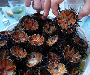 https://www.tp24.it/immagini_articoli/05-06-2018/1528217689-0-trapani-vendita-abusiva-pesce-ricci-multati-commercianti-ambulanti.jpg
