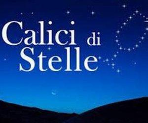 https://www.tp24.it/immagini_articoli/05-08-2016/1470406542-0-calici-di-stelle-gli-appuntamenti-in-sicilia-le-proposte-di-donnafugata-e-firriato.jpg