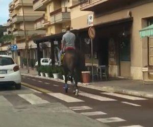 https://www.tp24.it/immagini_articoli/05-09-2019/1567675862-0-allippodromo-alcamo-cavalli-pista-ciclabile-video.png