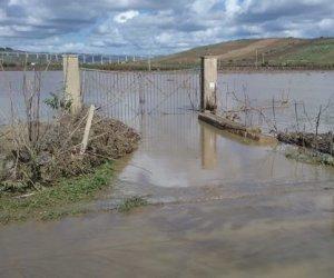 https://www.tp24.it/immagini_articoli/05-11-2018/1541419726-0-maltempo-belice-esonda-disperare-agricoltori-castelvetrano.jpg