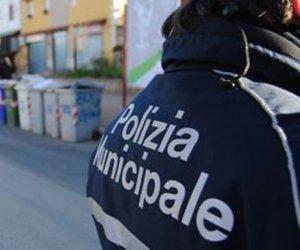 https://www.tp24.it/immagini_articoli/05-12-2018/1544024631-0-partanna-deturpa-zona-vincolo-archeologico-polizia-municipale-sequestra-larea.jpg