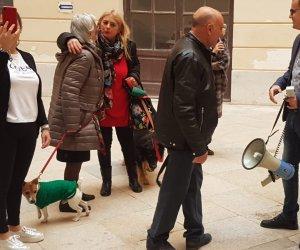 https://www.tp24.it/immagini_articoli/05-12-2019/1575560857-0-trapani-signora-vultaggio-cane-romeo-piazza-protestare-sindaco.jpg