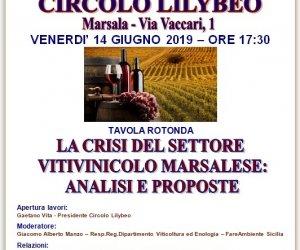 https://www.tp24.it/immagini_articoli/06-06-2019/1559803976-0-marsala-tavola-rotonda-crisi-settore-vitivinicolo-marsalese-analisi-proposte.jpg