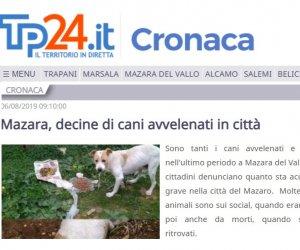 https://www.tp24.it/immagini_articoli/06-08-2019/1565098994-0-mazara-sindaco-quinci-false-notizie-cani-avvelenati.jpg