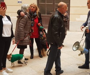 https://www.tp24.it/immagini_articoli/06-12-2019/1575627144-0-signora-cagnolino-tranchida-rizzi-parlo-pregiudicati.jpg