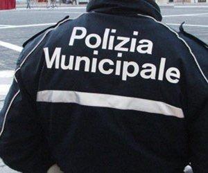 https://www.tp24.it/immagini_articoli/06-12-2019/1575627477-0-blitz-parcheggiatori-abusivi-trapani-multe-daspo-urbano.jpg