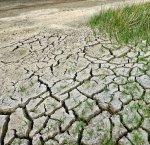 https://www.tp24.it/immagini_articoli/07-01-2018/1515318980-0-agricoltura-sicilia-servono-fondi-siccita.jpg