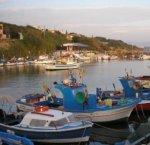 https://www.tp24.it/immagini_articoli/07-01-2018/1515363224-0-selinunte-barche-pescatori-bloccate-alghe-sabbia.jpg