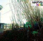 https://www.tp24.it/immagini_articoli/07-01-2019/1546823930-0-marsala-bella-fitusa-sacchi-dimmondizia-leternit-abbandonati-contrada-giunchi.jpg
