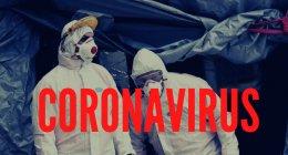 https://www.tp24.it/immagini_articoli/07-04-2020/1586213070-0-dati-previsioni-soldi-coronavirus-sicilia-provincia-trapani.png