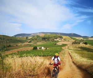 https://www.tp24.it/immagini_articoli/07-05-2021/1620370709-0-la-trasversale-sicula-diventa-anche-itinerario-cicloturistico.jpg