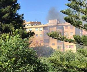 https://www.tp24.it/immagini_articoli/07-05-2021/1620407327-0-marsala-incendio-a-sappusi-fiamme-nell-ex-scuola-lombardo-radice.jpg