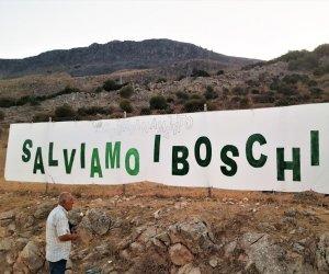 https://www.tp24.it/immagini_articoli/07-05-2021/1620419981-0-incendi-salviamo-i-boschi-politica-siciliana-inadeguata-e-incapace.jpg