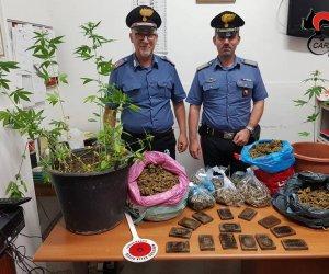 https://www.tp24.it/immagini_articoli/07-07-2018/1530964966-0-paceco-centrale-droga-casa-arrestato-33enne-addosso-maglietta-brand.jpg