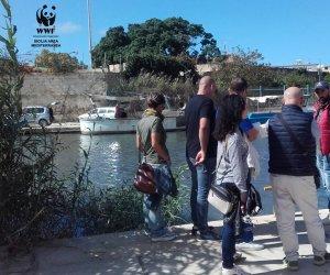 https://www.tp24.it/immagini_articoli/07-10-2019/1570437614-0-conclusa-mazara-urban-nature.jpg