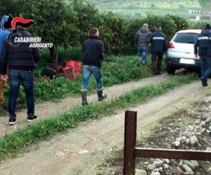 https://www.tp24.it/immagini_articoli/07-11-2019/1573112697-0-schiavi-campagne-siciliane-sette-arresti-notte.jpg
